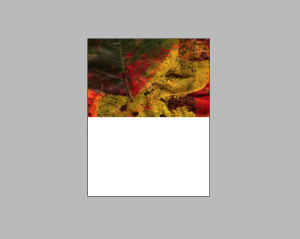 InDesign Page Sample