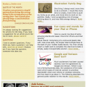 Part 2: Electronic Newsletters — Why you should consider using them