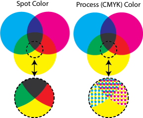 What's the Difference Between Spot and Process Printing?