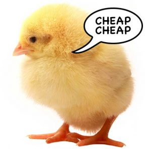 "Do you really want a cheap ""DIY Website""?"