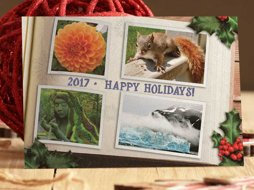 MSA Holiday Card 2017
